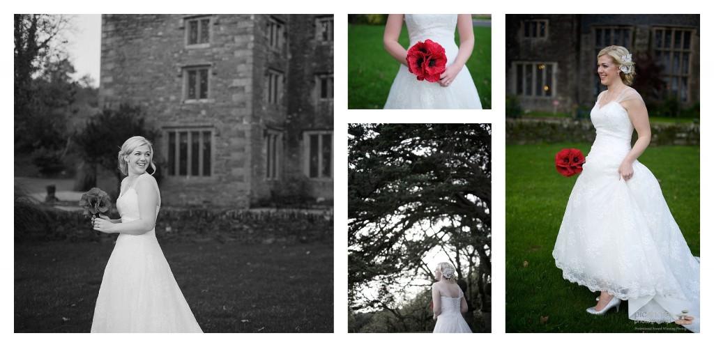 boringdon hall wedding photographer picshore photography 14